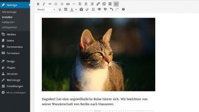 WordPress für Einsteiger: Beiträge und Seiten erstellen