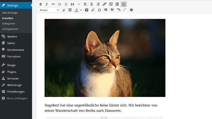 wordpress-fuer-einsteiger-beitraege-und-seiten-erstellen