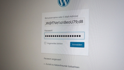 """WordPress für Einsteiger: Muss der Admin """"admin"""" sein?"""
