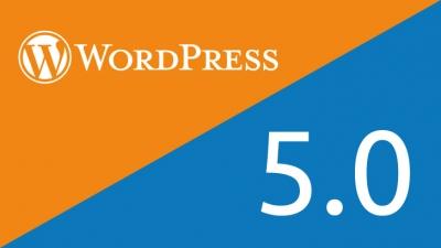 WordPress 5.0: Alles Wichtige zur neuen Version