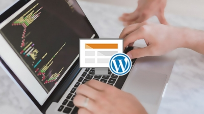 Website-Umzug: So importierst Du Content in Dein WordPress