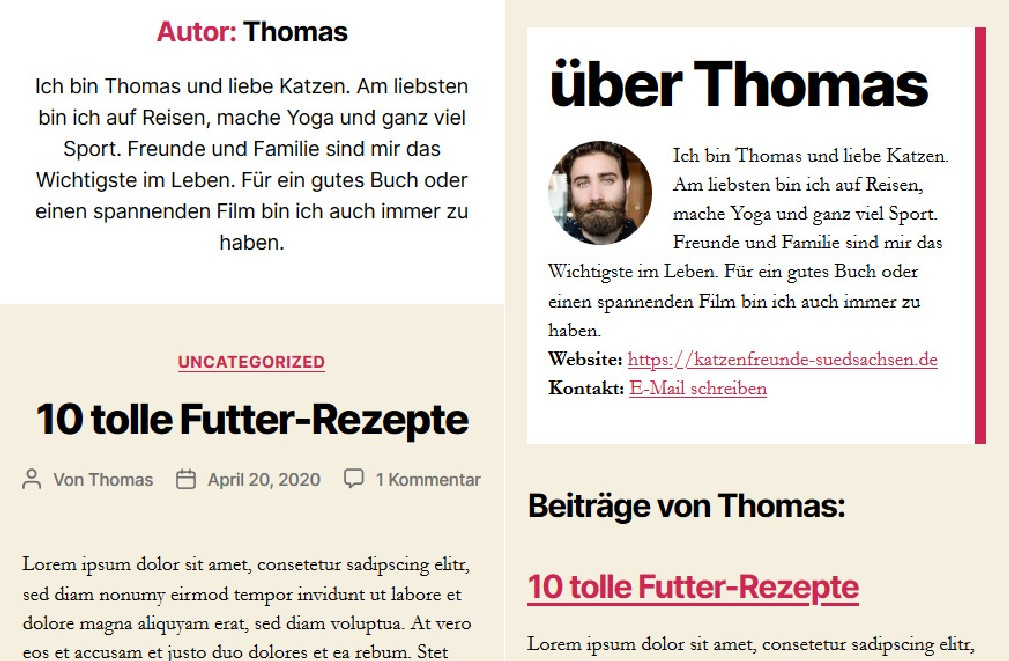 WordPress Autor-Template erstellen