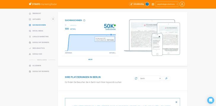 Screenshot marketingRadar: Übersicht Performance auf Google.
